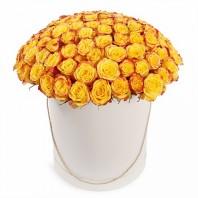 Букет из 101 жёлтой розы в шляпной коробке «Огненный поцелуй»