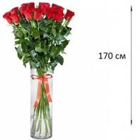 Букет из 19 красных роз  «Дорога любви»