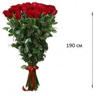Букет из 31 красной розы  «На грани чувств»