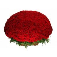 Корзина цветов с 1001 красной розой «Пожар любви»