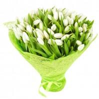 Букет из 101 белого тюльпана «Весенний поцелуй»