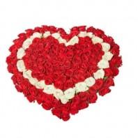Цветочная композиция из 101 розы Гран При и Аваланж «История любви»