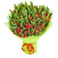 Букет из 101 красного тюльпана «Очарование весны»