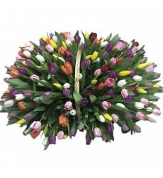 Корзина цветов с 201 разноцветным тюльпаном «Сказка о любви»