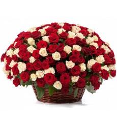 Корзина цветов с 301 красной и белой розами «Нежный шёпот»