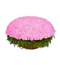 Корзина цветов с 301 розовой розой Аква «Серенада под окном»