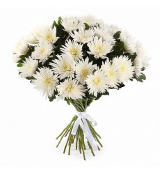 Букет из 35 белых одноголовых хризантем «Осеннее чудо»