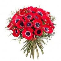 Букет из 39 красных анемонов «Шёпот любви»