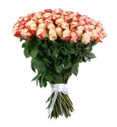 Букет из 43 роз красно-белого цвета  «Нежная арфа»