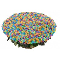 Корзина цветов с 501 радужной розой «Радужные грёзы»