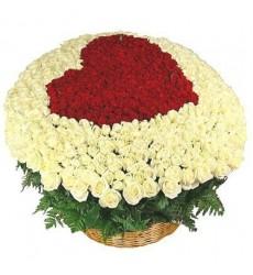 Цветочная композиция из 501 розы «Любовная ода»