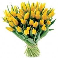 Букет из 51 жёлтого тюльпана «Соловьиная песня»