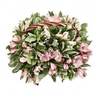 Корзина цветов с 11 альстромериями «Виченца»