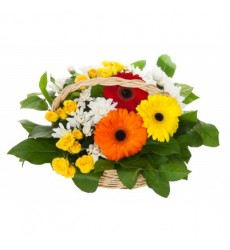 Корзина цветов с 3 герберами, 2 кустовыми розами и хризантемами «Песня ситара»