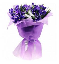 Букет из 49 ирисов «Фиолетовая бабочка»