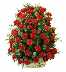 Корзина цветов со 101 красной гвоздикой «День Победы»