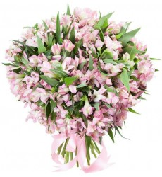 Букет невесты из 15 розовых альстромерий «Виоль д'амур»