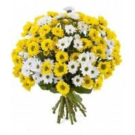 Букет из 21 кустовой хризантемы «Жемчужные бусы»