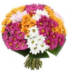 Букет из 15 кустовых хризантем «Элегантный поклон»