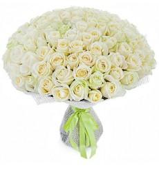 Букет из 101 белой розы «Облако айвори»