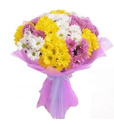 Букет из 15 разноцветных кустовых хризантем «Карнавал улыбок»