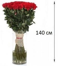 Букет  из 101 розы 140 см. «Бархатные крылья»