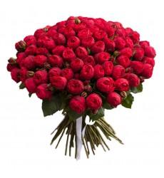 Букет из 99 красных пионовидных роз Ред Пиано «Благородный рыцарь»