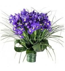 Букет из 45 ирисов «Фиолетовые грёзы»