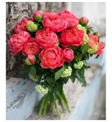 Букет  из 25 пионов Coral Sunset «Розовый мармелад»