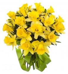 Букет из жёлтых нарциссов «Апрельские лучи»