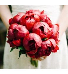 Букет невесты из 11 красных пионов «Слияние сердец»