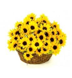 Корзина цветов с 31 подсолнухом «Июльский зной»