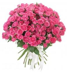 Букет из 25 кустовых роз «Розовое суфле»