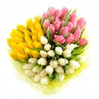 Букет из 75 тюльпанов «Улыбка парижанки»