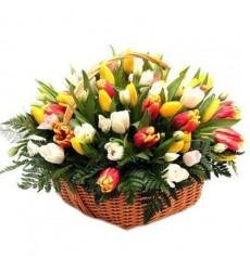 Корзина цветов с 51 тюльпаном «Весенний бумеранг»