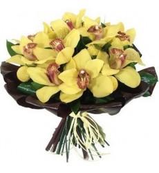 Букет из 11 орхидей «Мадонна Литта»