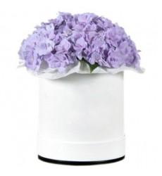 Цветы в коробке  с 3 гортензиями «Фиолетовое безе»