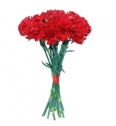 Букет из 19 красных гвоздик «9 мая»