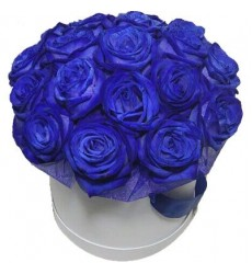 Цветы в коробке  с 19 синими розами «Сапфировое очарование»