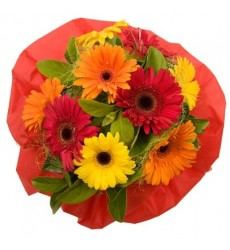 Букет из 9 разноцветных гербер «Цветочная шкатулка»