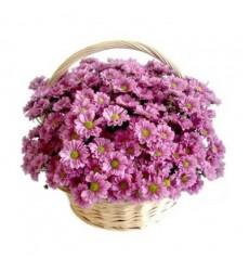 Букет из 15 хризантем «День волшебства»