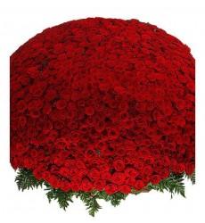 Корзина цветов с 1001 розой Гран При и папоротником «Взрыв чувств»