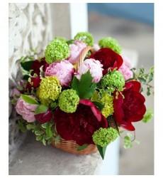 Корзина цветов с 5 зелёными гвоздиками и пионами «Сад Мирабель»