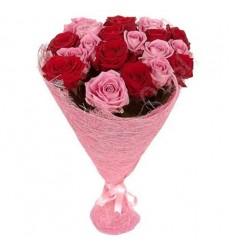 Букет из 25 красных и розовых роз «Алхимия любви»