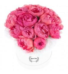 Цветы в шляпной коробке с 19 пионами «Дамские шалости»