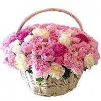 Корзина цветов со 101 пионом «Весенняя прогулка»