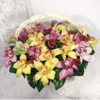 Корзина цветов с 29 разноцветными орхидеями «Краски весны»