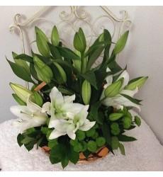 Корзина цветов с 5 лилиями и 4 кустовыми хризантемами «Поцелуй незнакомки»