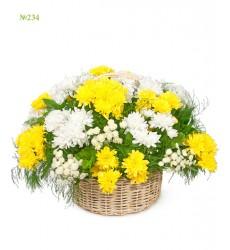 Корзина цветов с 19 кустовыми хризантемами и зеленью «Летняя симфониетта»