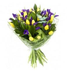 Букет из 19 тюльпанов и 8 ирисов «Весенний этюд»